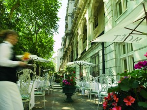 Royal Horseguards Hotel Terrace