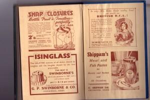 Isinglass